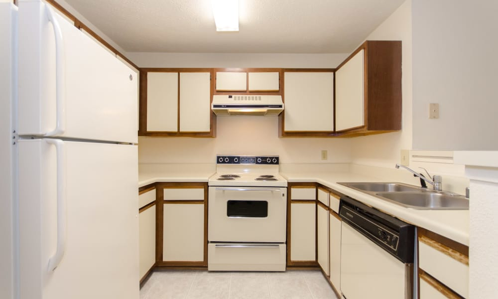 Ample cabinet space available at The Pointe at Stafford Apartment Homes in Stafford, VA