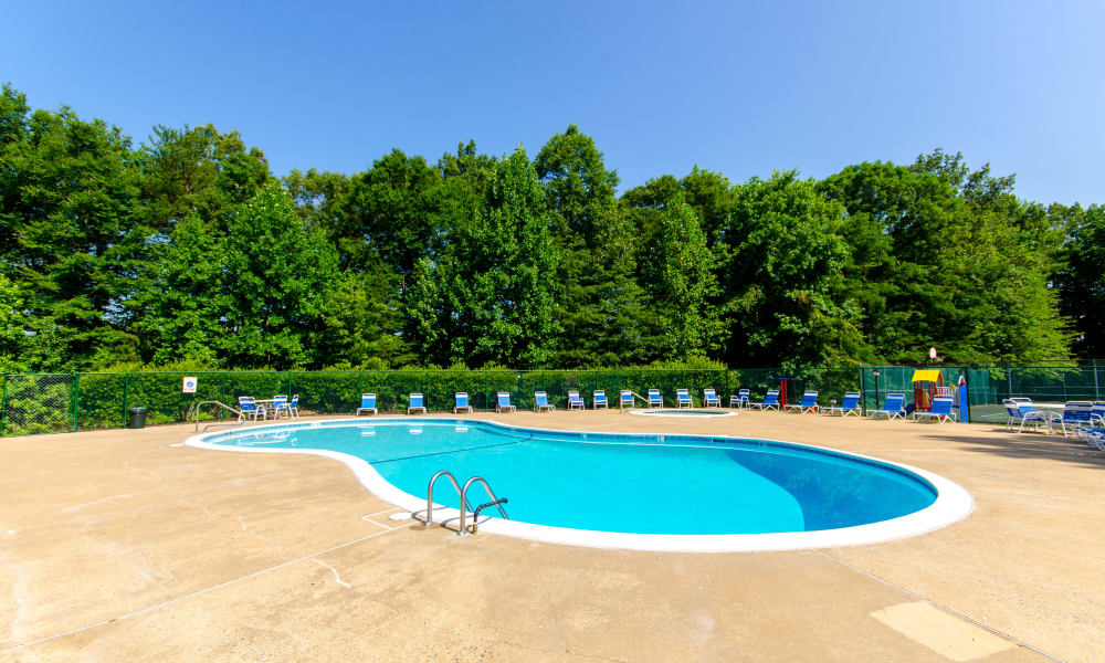 Luxurious swimming pool at The Pointe at Stafford Apartment Homes in Stafford, VA