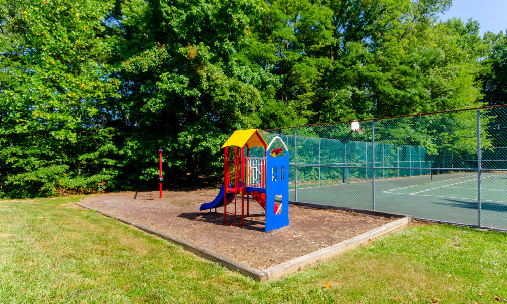 Another view of the playground at The Pointe at Stafford Apartment Homes in Stafford, VA