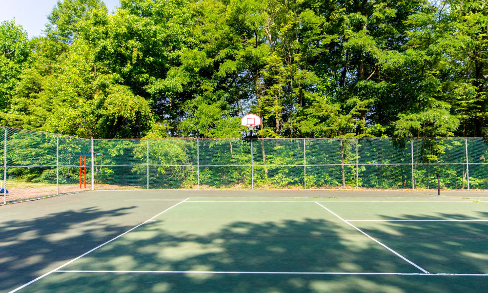 The Pointe at Stafford Apartment Homes offers a sport court in Stafford, VA