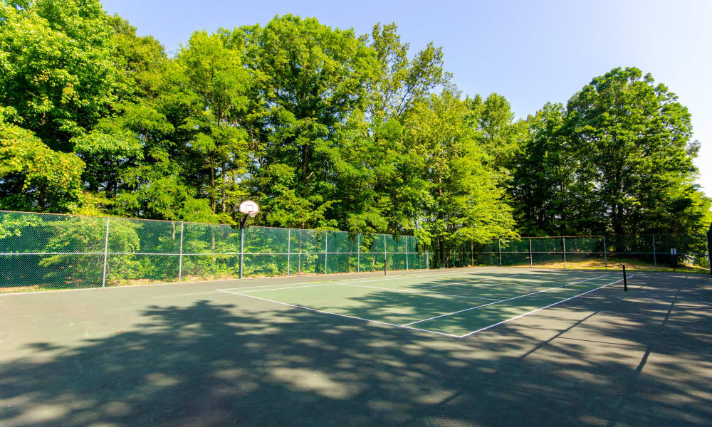 Another view of the fun sport court at The Pointe at Stafford Apartment Homes in Stafford, VA