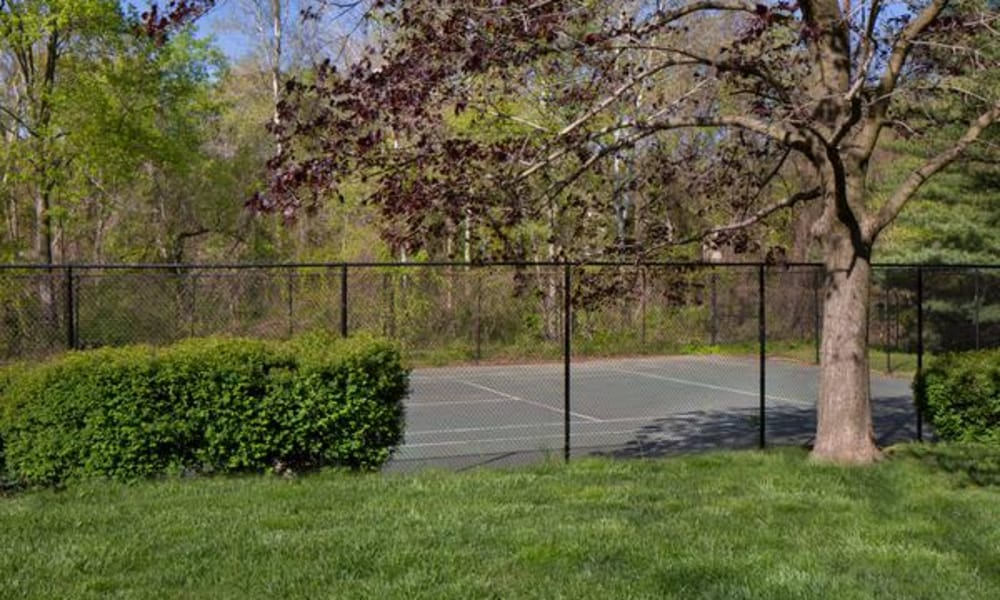 Beautiful green areas at Brookdale at Mark Center Apartment Homes, in Alexandria, VA