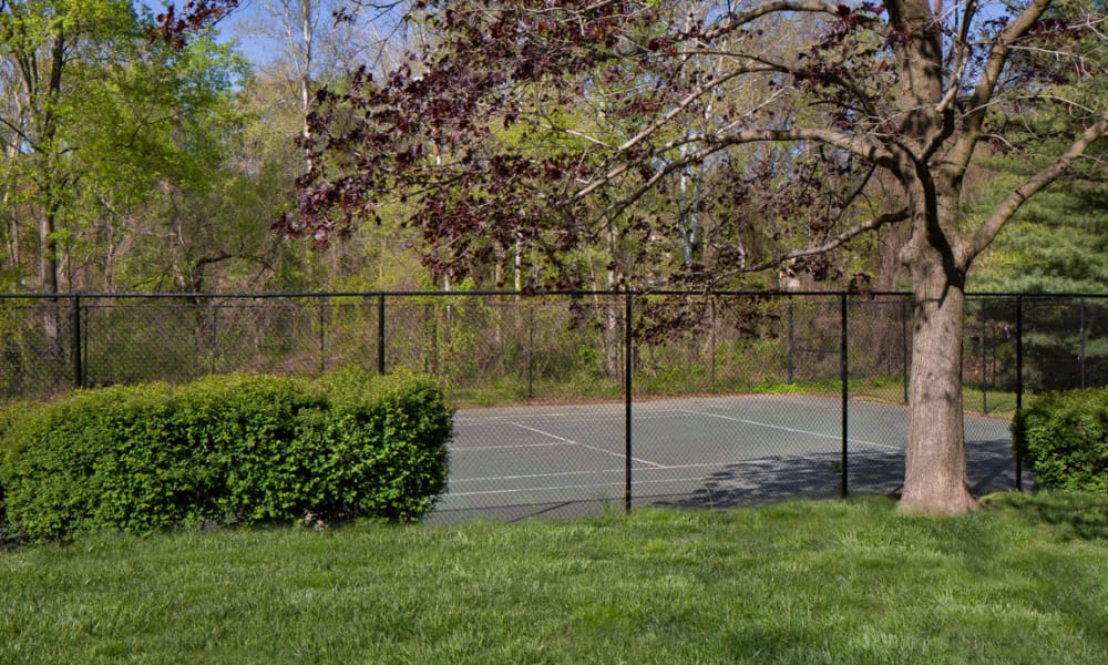 Willow Run at Mark Center Apartment Homes offers a tennis court in Alexandria, VA