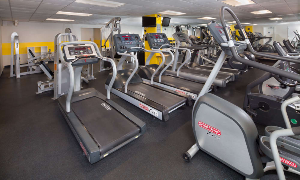 Willow Run at Mark Center Apartment Homes offers a fitness center in Alexandria, VA