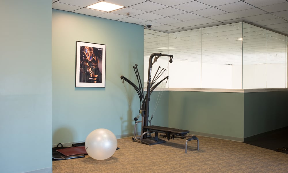fitness equipment at Wellington Hill