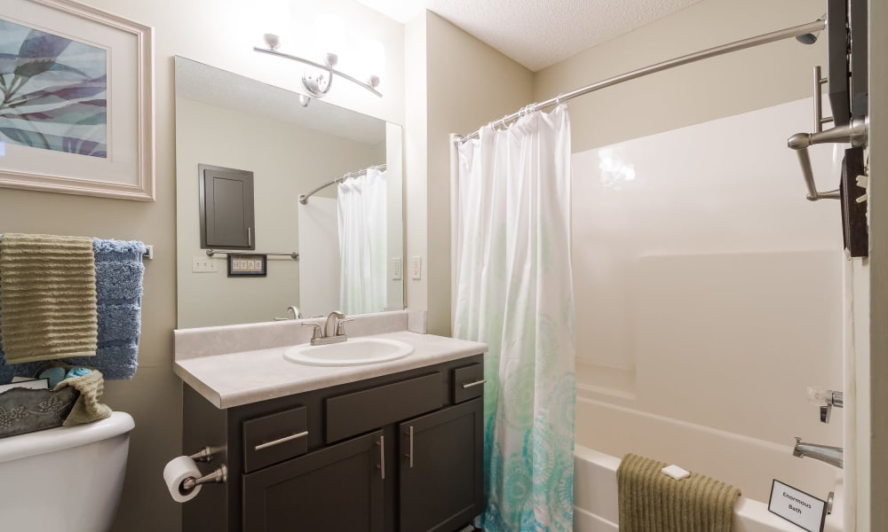 Bathroom at Castlegate Commons Apartments in Bonaire, GA