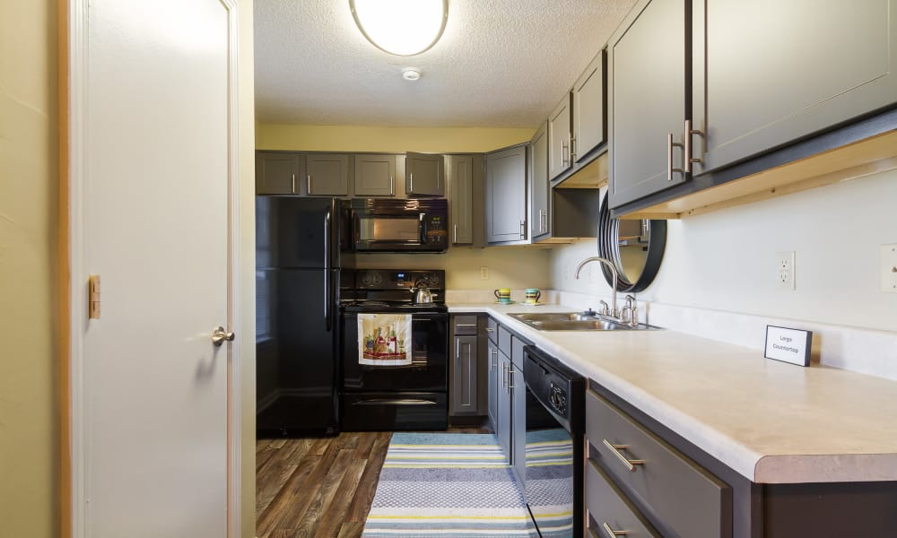 Castlegate Commons Apartments offers a state-of-the-art kitchen in Bonaire, GA