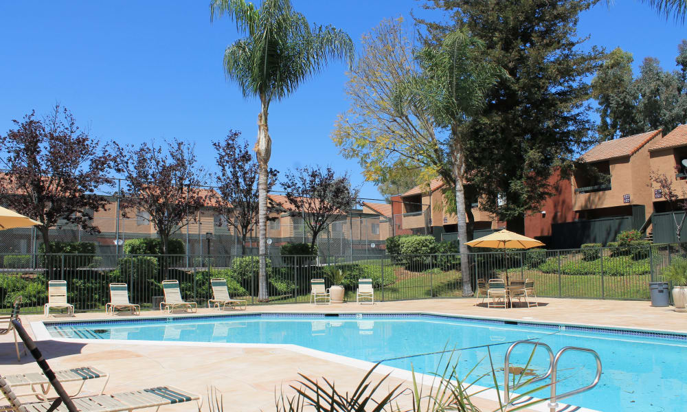 Enjoy apartments with a swimming pool that is great for entertaining at Brookhollow Apartments