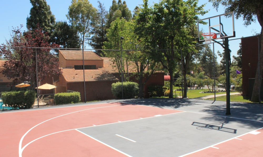 Brookhollow Apartments offers a great for entertaining basketball court in West Covina, California