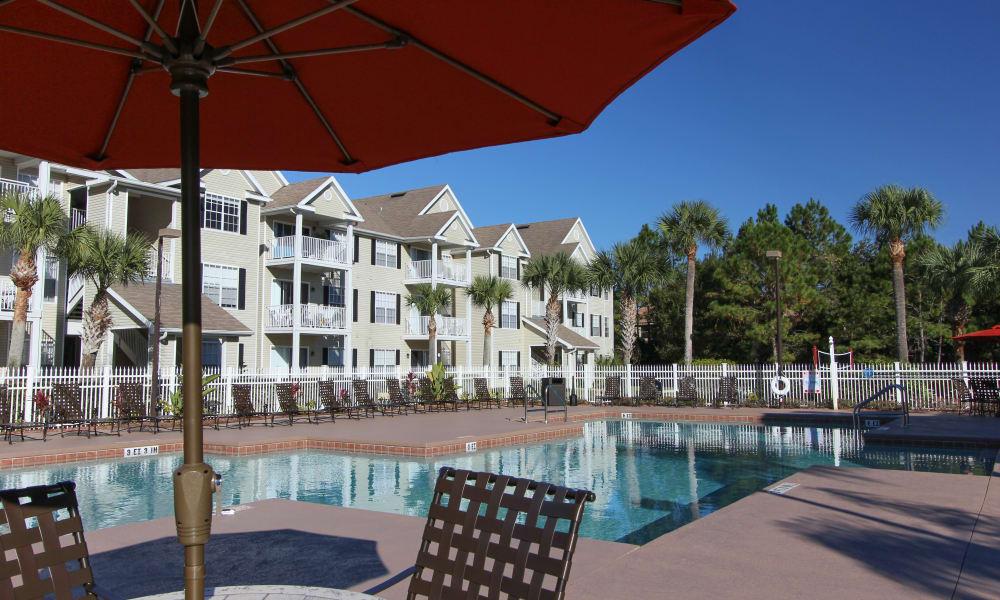 Take a dip in Palms at Wyndtree's gorgeous pool