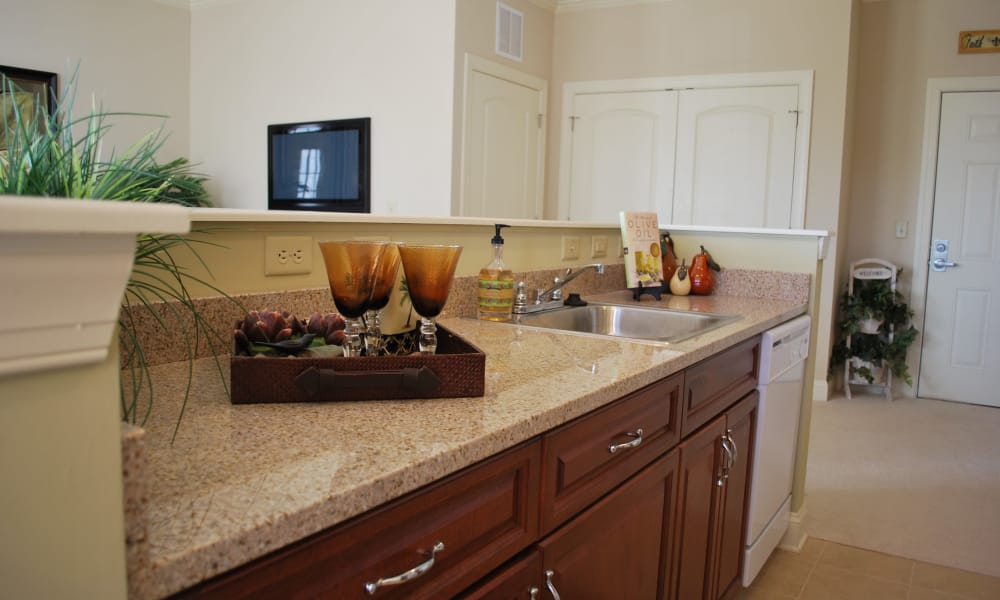granite counter-tops at Waltonwood Cary Parkway