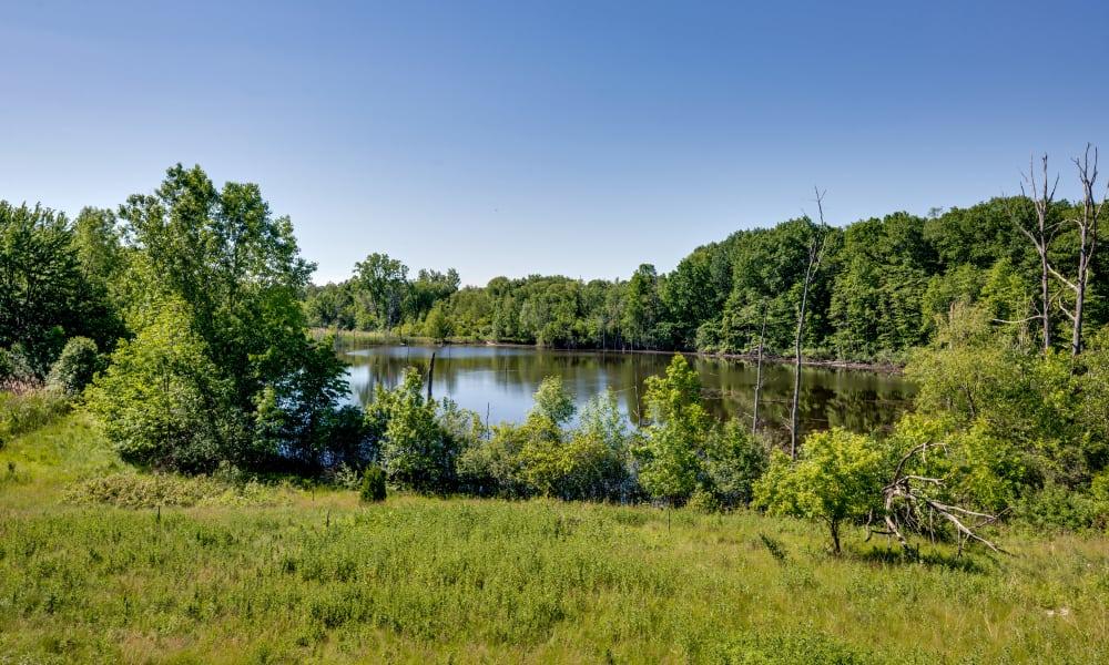 Lake at Auburn Gate in Auburn Hills, MI
