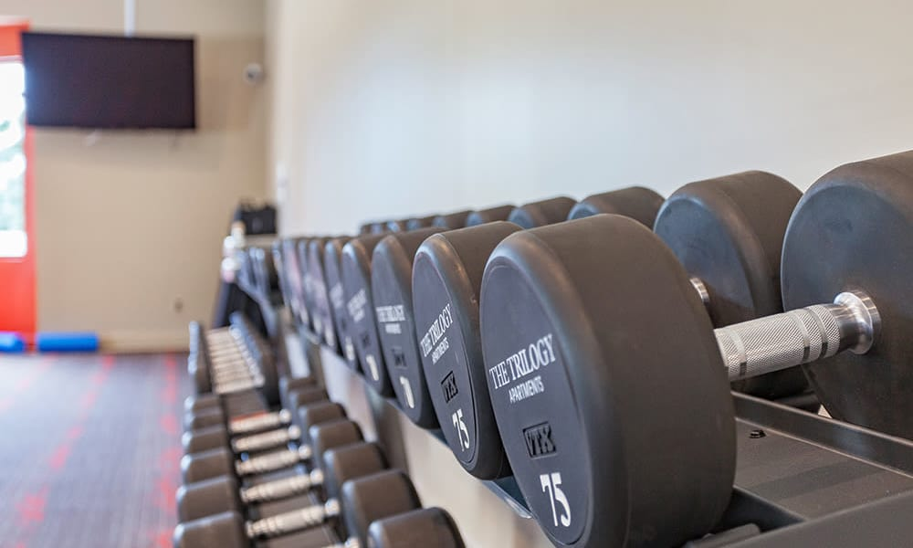 Weights at The Trilogy Apartments in Belleville, MI