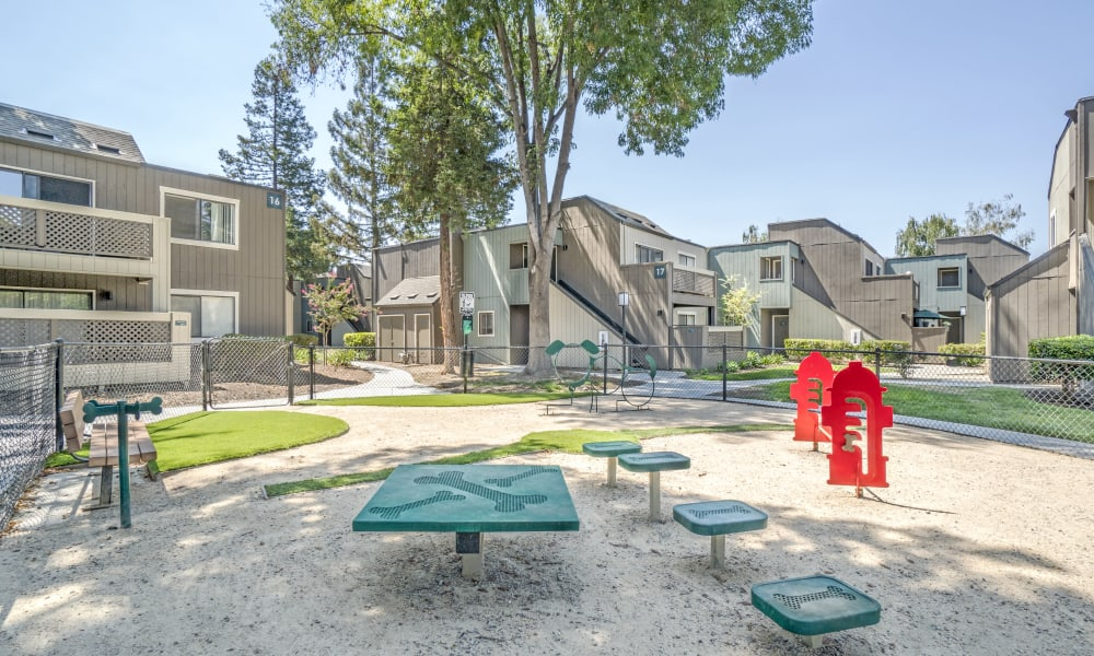 Dog park at Terra Apartments in San Jose, CA