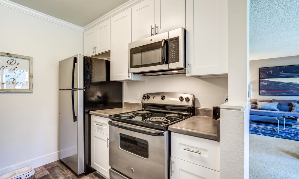 Beautiful kitchen at Terra Apartments in San Jose, CA