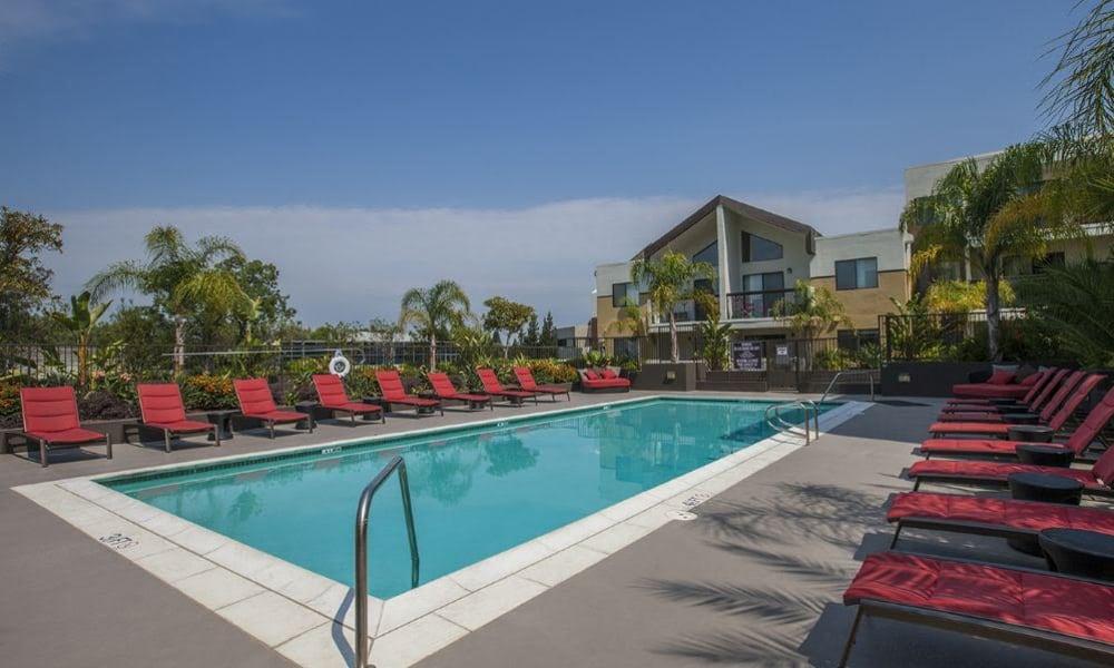 Beautiful pool in the sun at 15Fifty5 Apartments in Walnut Creek