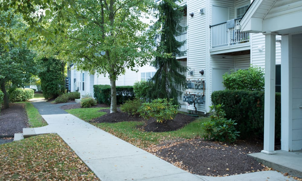 Enjoy apartments with walking paths at Ashwood Valley