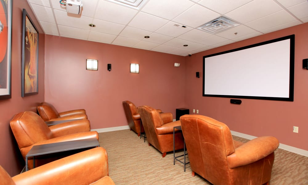 Community Theater at Chelsea Ridge Apartments in Wappingers Falls, NY
