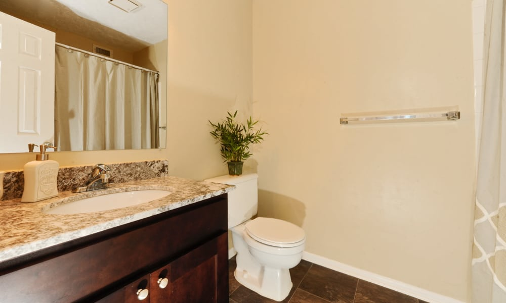 Bathroom at Chase Lea Apartment Homes in Owings Mills, MD