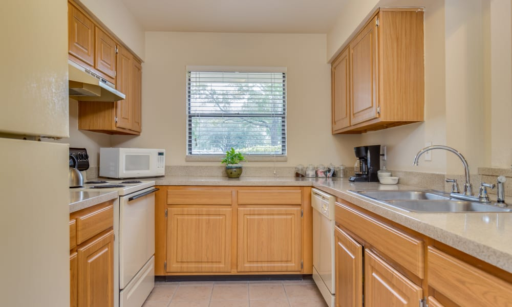 Beautiful kitchen at Cypress Cove in Jacksonville, Florida