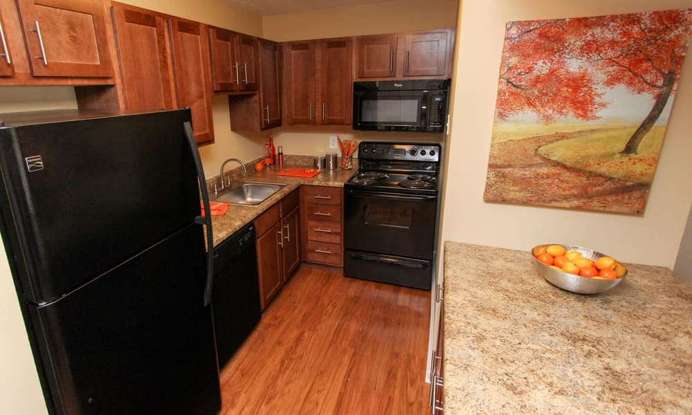 Enjoy apartments with a modern kitchen at The Bluffs at Epps Bridge