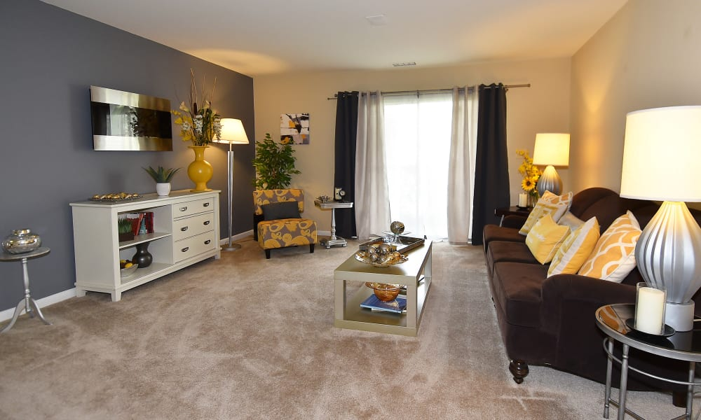 Northampton Apartment Homes offers a naturally well-lit living room in Largo, MD