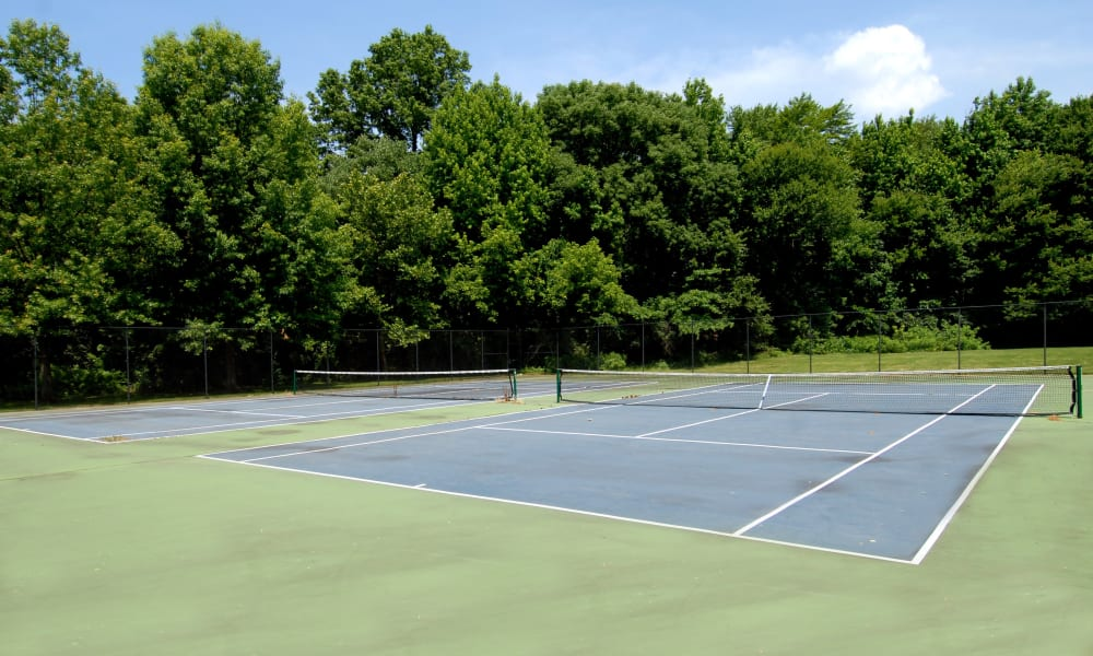 Tennis Court at Northampton Apartment Homes in Largo, MD