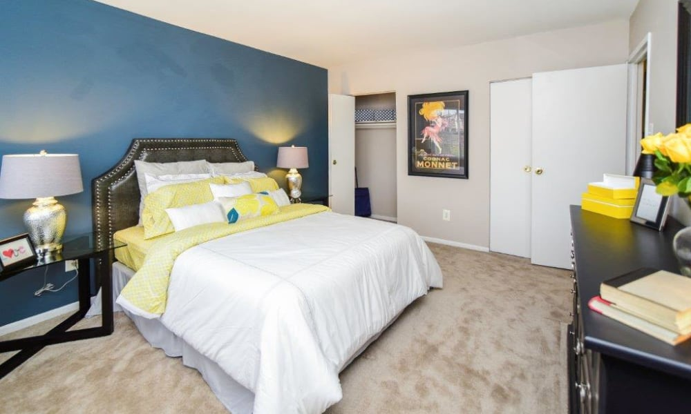 Our apartments in Harleysville, PA showcase a spacious bedroom