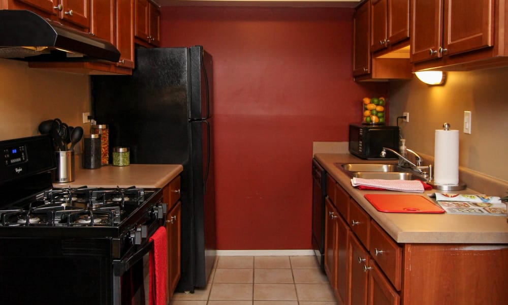 Enjoy apartments with a modern kitchen at Rustic Oaks