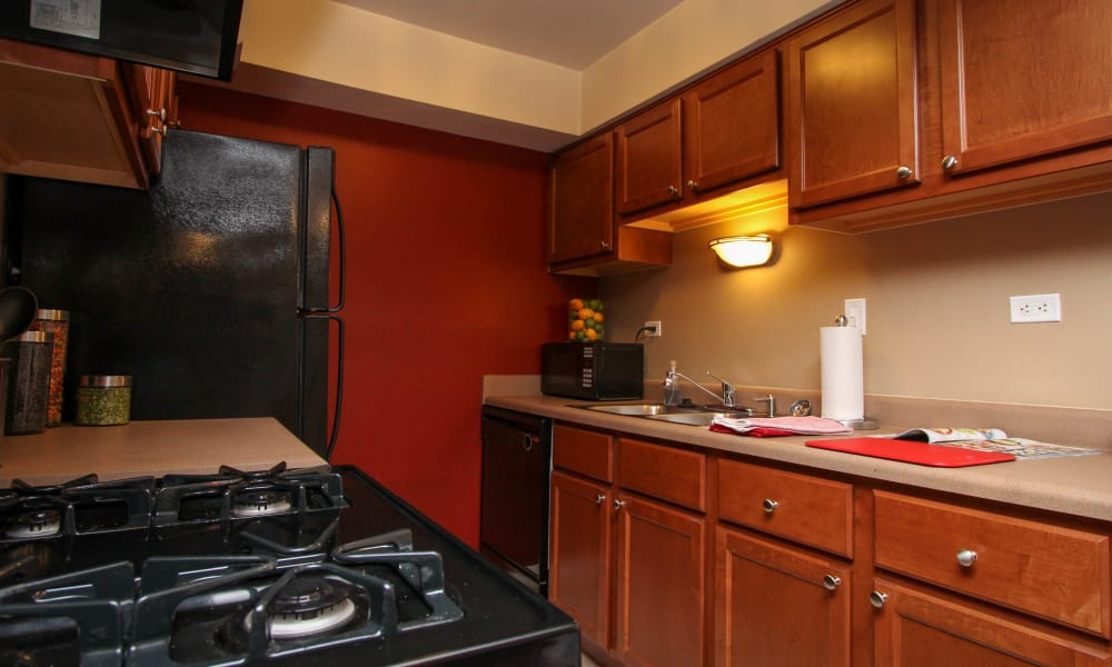 Our apartments in Oak Forest, Illinois showcase a modern kitchen