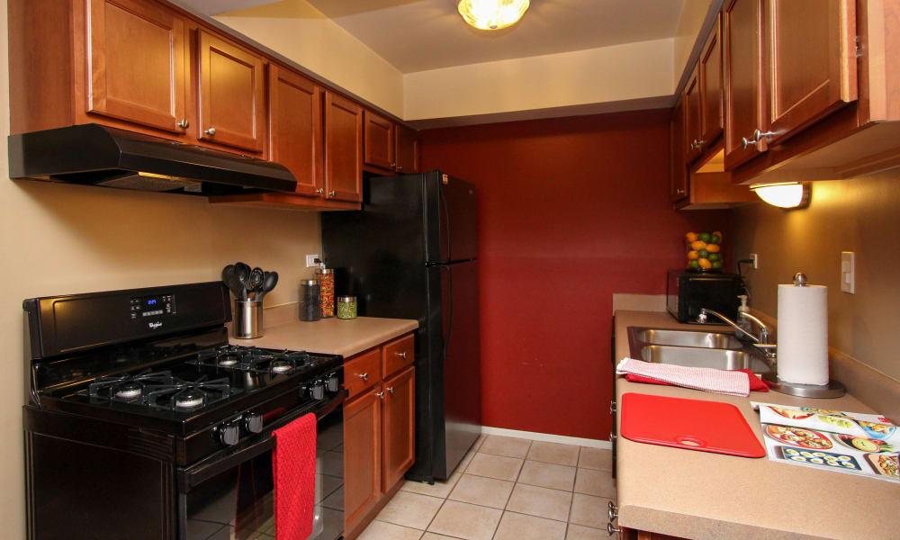 luxury kitchen at Rustic Oaks in Oak Forest, IL