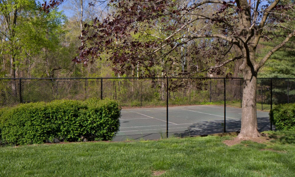 Our apartments in Alexandria, VA offer a tennis court