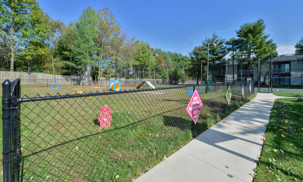 Dog park at Tory Estates Apartment Homes in Clementon