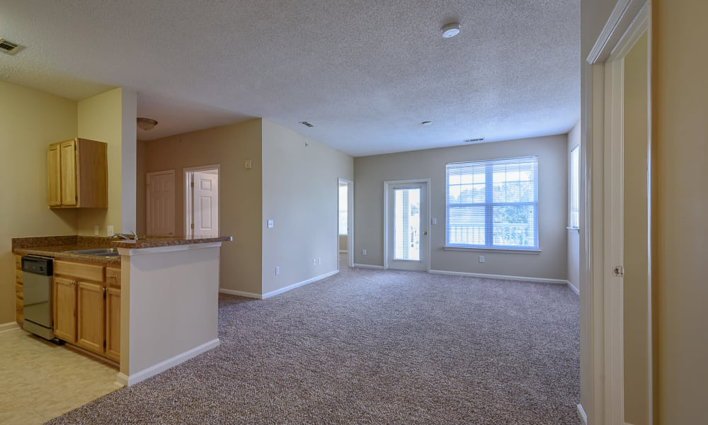 kitchen and living room at Falls Creek Apartments & Townhomes
