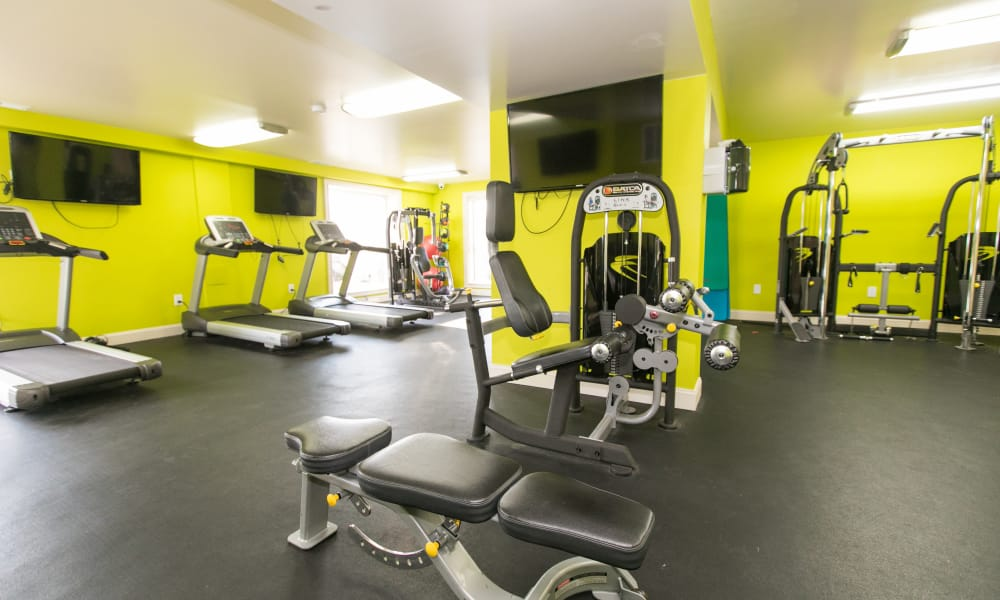 Luxury fitness center at Chesapeake Glen Apartment Homes in Glen Burnie, MD