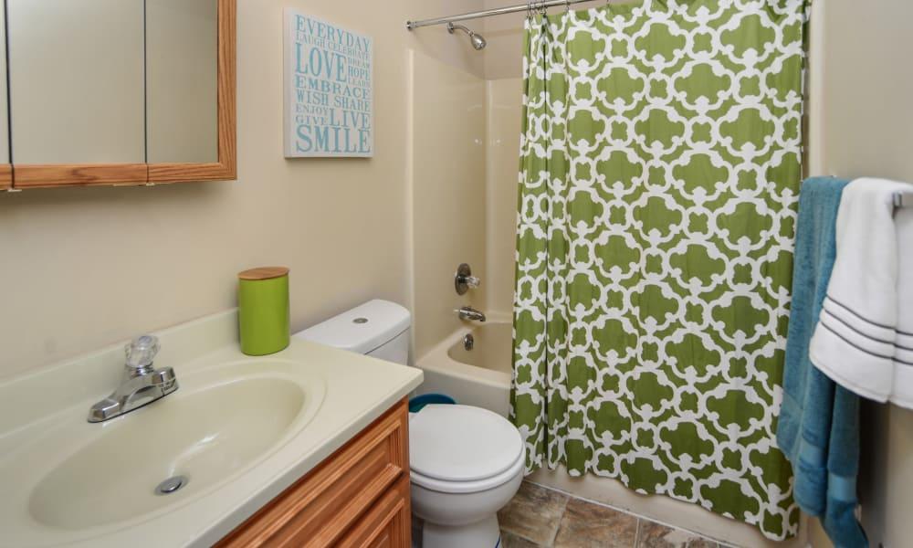 Master bathroom at Fox Run Apartments & Townhomes