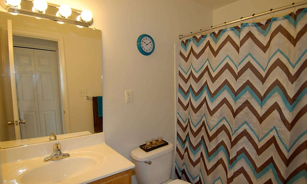 Bathroom at Cedar Gardens and Towers Apartments & Townhomes in Windsor Mill, MD