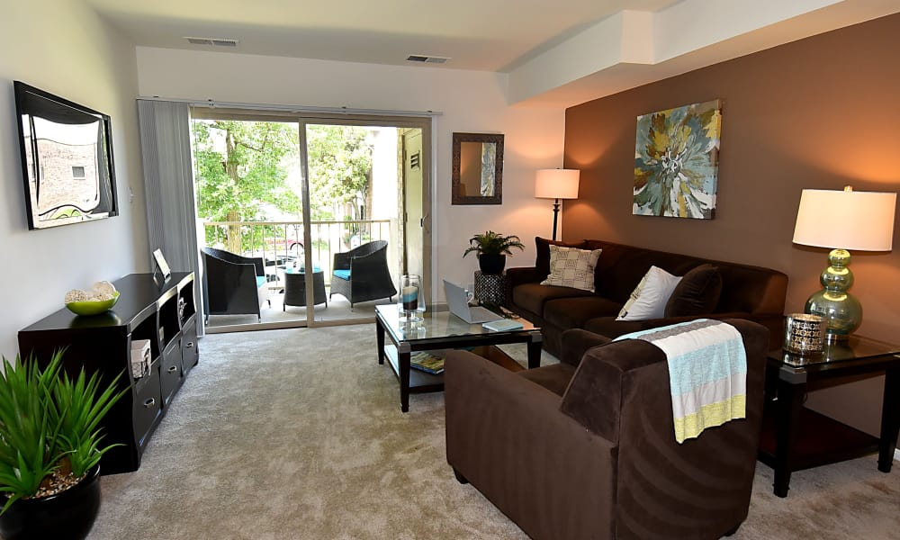 Our apartments in Beltsville, MD showcase a spacious living room