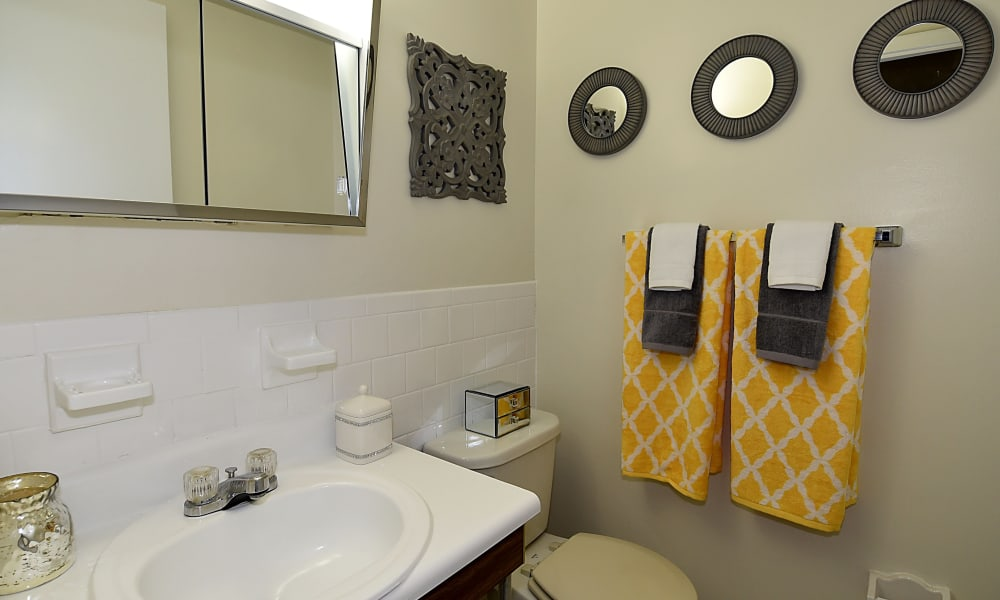 Lighthouse at Twin Lakes Apartment Homes offers a bathroom in Beltsville, MD