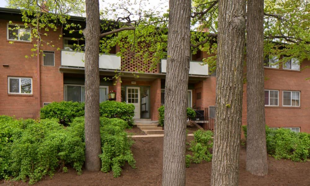 Landscaping at Lynbrook at Mark Center Apartment Homes