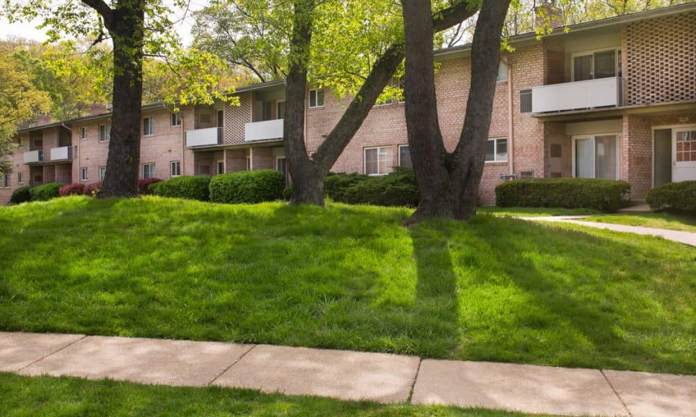 Large trees at Lynbrook at Mark Center Apartment Homes