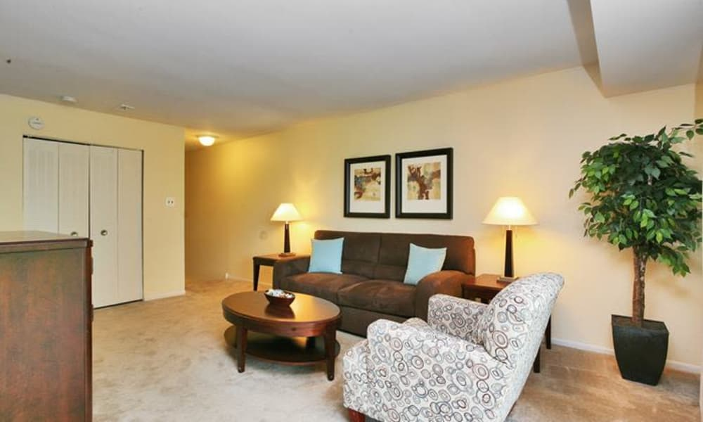 Luxury living room at Lumberton Apartment Homes in Lumberton, NJ
