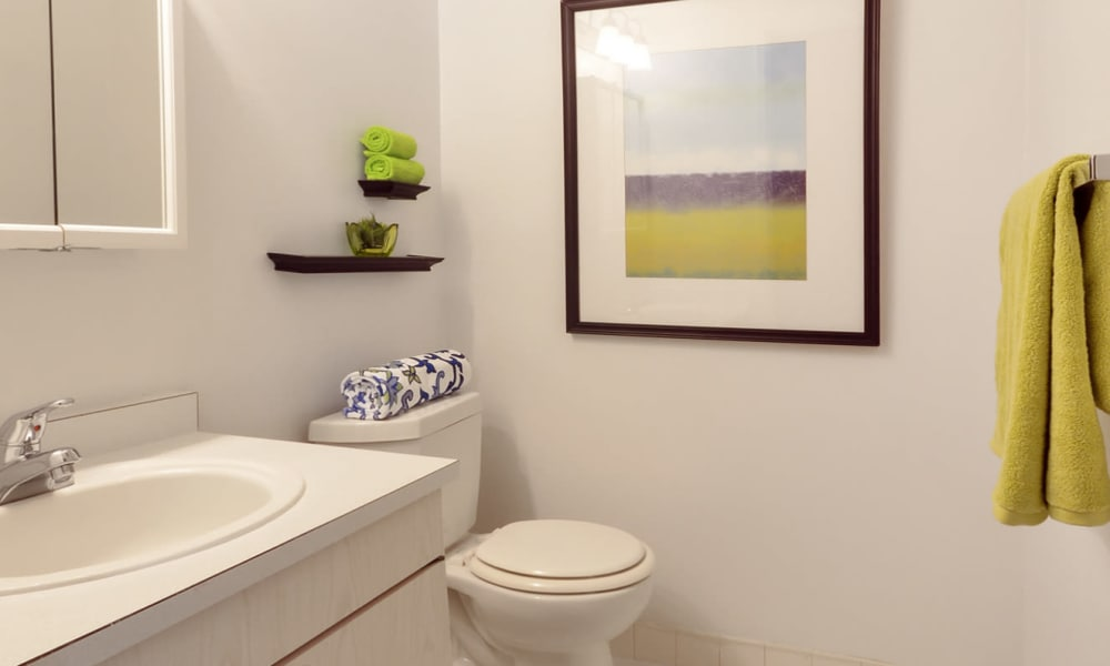 Bathroom with green accents at William Penn Village Apartment Homes in New Castle, Delaware