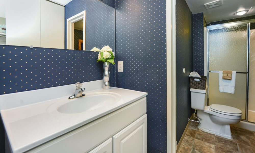 Bathroom at Lakewood Hills Apartments & Townhomes in Harrisburg, PA