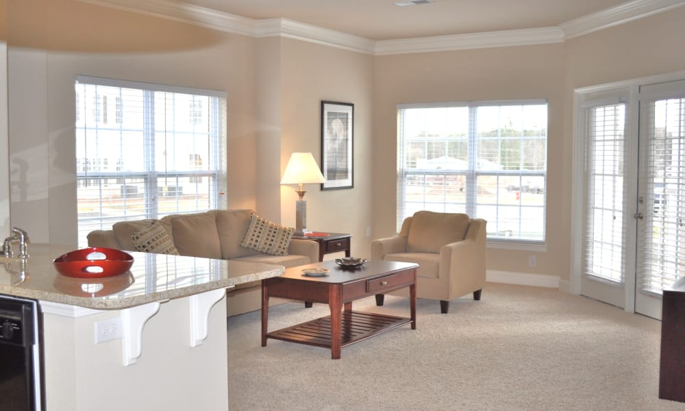 Large open floor plans at Delaney Apartment Homes in Concord