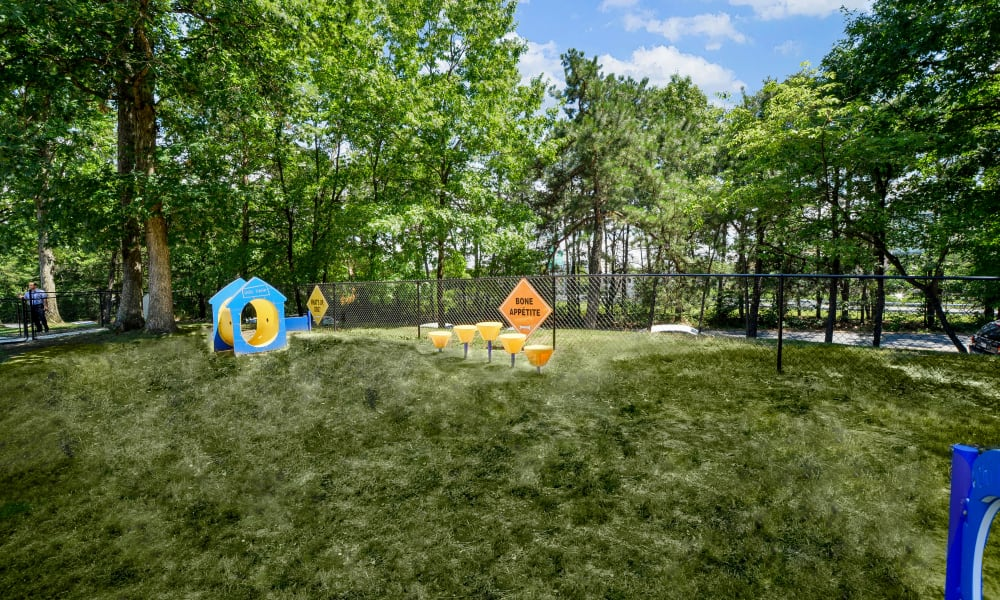 Cedar Creek Apartment Homes offers a dog park in Glen Burnie, MD