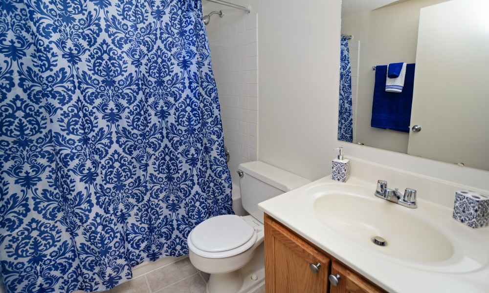 Model bathroom with tasteful shower curtain at Arbors at Edenbridge Apartments & Townhomes in Parkville, MD