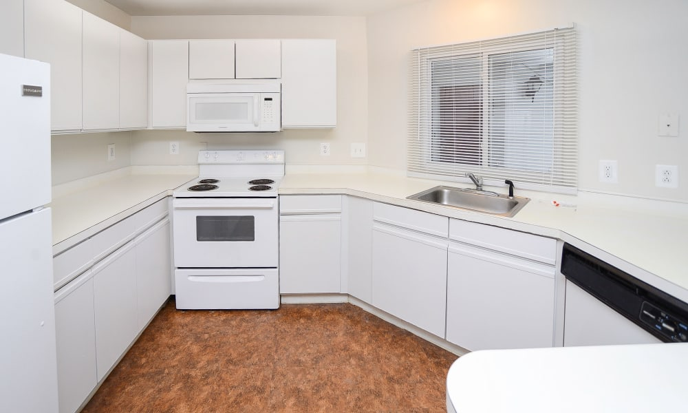 Enjoy apartments with a natrually well-lit kitchen at Seagrass Cove Apartment Homes