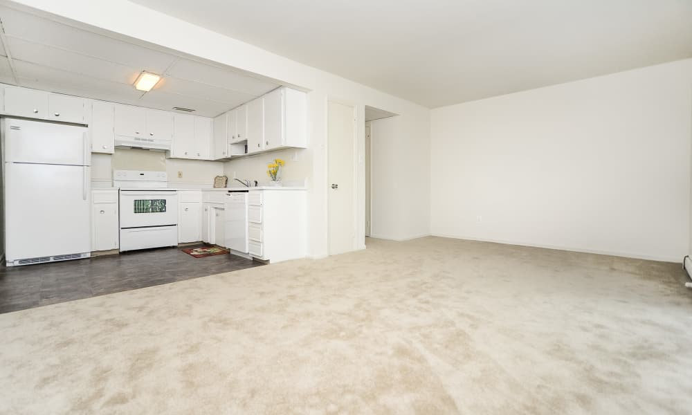 Our apartments in Vineland, New Jersey showcase a spacious kitchen
