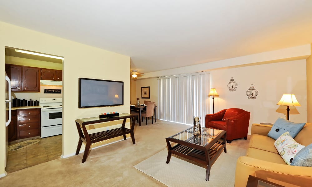 Our apartments in Baltimore, MD showcase a spacious living room